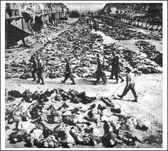 Mucho como los campos de concentración durante la Segunda Guerra Mundial, los campos Cubanos causaron la muerte de cientos de ciudadanos por enfermedad, hambre, y tortura.