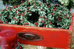 mini berry boxwood wreaths by Circle Home and Design