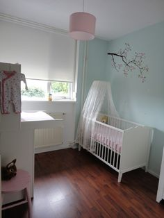 Cute blue & pink babygirl's room