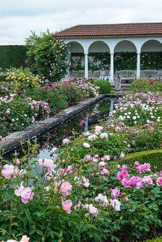 The Renaissance garden | Shropshire