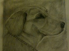 First time I tried to sketch a dog.... For a friend.....