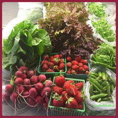 That is 1 Romaine & 1 Leaf Lettuce! 3 Different kinds of Organic Strawberries Snap Peas! Organic Market, Snap Peas, Raw Vegan, Farmers Market, Lettuce, Strawberries, Sprouts, Spinach, Fresh