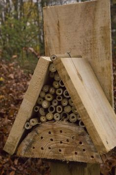 Help out some creepy crawlies and other wildlife this winter by building them a home in your garden. Use sticks to build a bug hotel as below or event a hedgehog campsite. Banyon Tree, Bug Hotel, Mason Bees, Garden Bugs, Farm Gardens, Fairy Houses, Habitats, Art For Kids, Decoration
