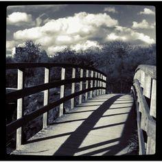 Quaint footbridge in Richmond Park