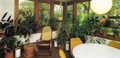 Decorating+With+Plants,+1978