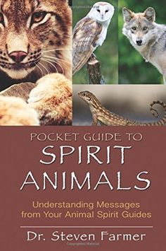 Pocket Guide to Spirit Animals: Understanding Messages from Your Animal Spirit Guides by Steven D. Farmer http://www.amazon.ca/dp/1401939651/ref=cm_sw_r_pi_dp_tCILub1FMNWKT