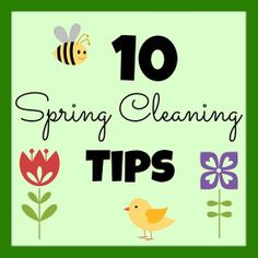 10 Spring Cleaning Tips (Spring Clean Your Casa)