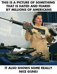 a guns and the government - Dump A Day Dianne Feinstein, Assault Weapon, Thing 1, Funny Captions, Ares, Military Veterans, Military Life, Gun Control, Thats The Way