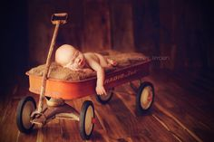 Another good wagon newborn pose.