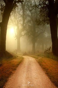 Cuanto misterio este camino...                                                                                                                                                      Más