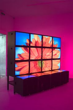 Diana Thater   knots + surfaces, 2001  5 Video Projectors, 16 video monitors, 6 DVD players, 6 DVDs, 1 Distribution amplifier, Lee filters and existing architecture