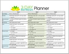3 Day Refresh, intro and cheat sheet!  Free download - 3 Day Refresh Planner PDF