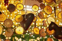 lemon-slices-232210_1280