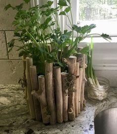 Rustic Planter   Driftwood Pot   Driftwood Container   Wood Planter   Wood Plant Container   Driftwood Planter   Round Planter   Planter Driftwood Planters, Rustic Planters, Driftwood Projects, Driftwood Art, Diy Planters, Driftwood Christmas Tree, Room With Plants, Rustic Crafts, Container Plants