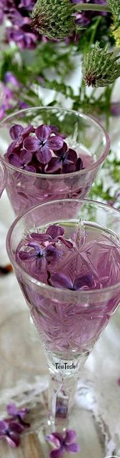 Lilac Flowers, Edible Flowers, Edible Plants, Fruit Drinks, Yummy Drinks, Cold Drinks, Lilac Blossom, Lavender Cottage, Flower Cart