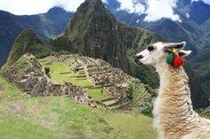 Machu Picchu - Peru #rovia #booked #travelon #travel