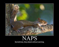 I love my Sunday afternoon nap!