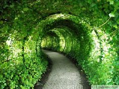 I need to create a tunnel capable of time travel that will allow me to be back in time for supper.