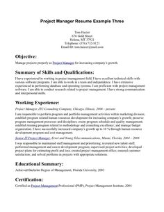 Career Goals Statement Examples Fascinating Resume Examples With Objective Statement Great Statements School .
