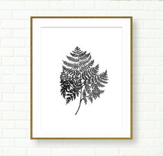 Botanical Prints PRINTABLE INSTANT DOWNLOAD Fern Art by FastPrint