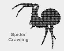 Check Out Our Awesome Product: Spider /  Web Bot per crawling di siti web - estrazione dati da siti internet>>>>>>Spider web per acquisizione di informazioni automatizzate