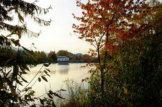 Dam at the autumn ❤