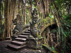Ubud et ses dragons : L'Indonésie comme vous ne l'avez jamais vue - Linternaute.com Voyager
