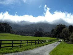 country life   Woodside, CA : country life photo, picture, image (California) at city ...