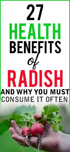 27 Health Benefits of Radish and Why You Must Consume it Often #radish #healthbenefits Health And Beauty Tips, Health Tips, Health And Wellness, Women's Health, Herbal Remedies, Health Remedies, Health Benefits Of Radishes, Womens Health Care, Vegetable Benefits