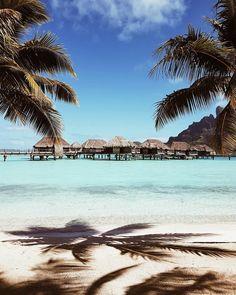 Four Seasons Resort Bora Bora is a Wedding Venue in Motu Tehotu, Bora Bora, French Polynesia. See photos and contact Four Seasons Resort Bora Bora for a tour. Vacation Places, Vacation Destinations, Dream Vacations, Vacation Spots, Places To Travel, Places To Go, Tropical Vacations, Greece Vacation, Tropical Beaches