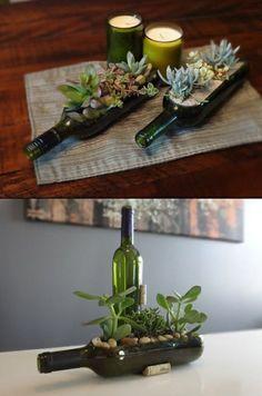 sukkulenten in der glasflasche einpflanzen