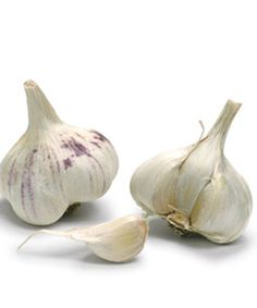 "Garlic helps thwart noxious diseases   For plants with a fungal, viral, or bacterial disease, cook up a batch of what I call ""garlic soup."" Purée two cloves of garlic in a blender for a minute. Slowly add 1 quart of water, and continue blending for about six minutes. Strain the mixture, and add 1/8 teaspoon of liquid soap. Pour the liquid into a storage container and cover tightly..."