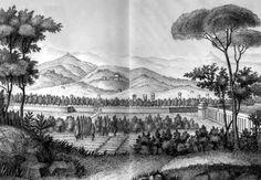 Lucca giace in una pianura circondata da colline e da montagne, eccetto che da…