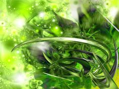 green   Green Wallpapers and Green Backgrounds 113 of 157