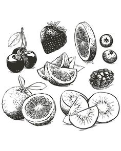 Off Sale Hand drawn collection of fruits sketch outline. Orange, berries, lime with clipping path. Fruit Sketch, Food Sketch, Fruits Drawing, Food Drawing, Fruit Tattoo, Kunst Tattoos, Fruit Vector, Fruit Art, Doodle Art