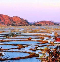 Loktak Lake,Manipur, India: