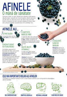 Slim And Fit, Reflexology, Doterra, Metabolism, Blueberry, Medical, Healthy, Tableware, Food