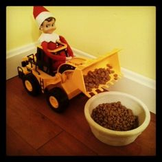 Elf on the shelf …
