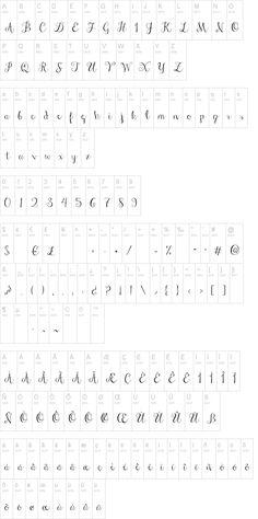Janda Stylish Script