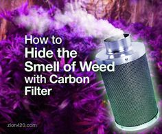Grow room ventilation with a carbon filter kit is the best solution to hide the smell of weed while growing indoors, in a grow room or a grow tent.