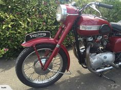 Triumph Speed Twin 1956 | Trade Me