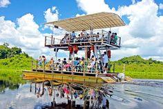 Passeio de chalana no Pantanal do Rio Miranda, na Fazenda San Francisco em Bonito, estado do Mato Grosso do Sul, Brasil.