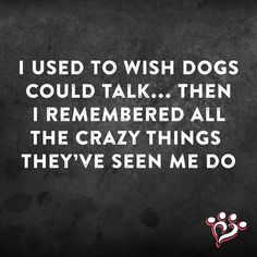 I used to wish dogs could talk... then I remembered all the crazy things they've seen me do
