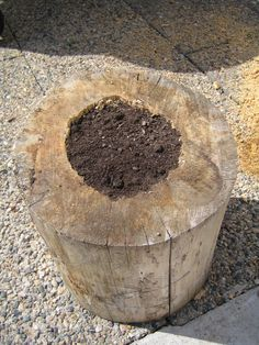 Tree stump flower pot I made