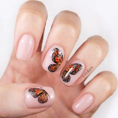 50 Stunning Trendy Nail Designs to Inspire Your Next Manicure ✨ 💘 AMAZING. I am obsessed with these nails! So talented❤️❤️❤️😍 By: Nails By Cambria Nails, Acrylic Nails, Gel Nails, Halloween Nails, Nail Design. Cute Halloween Nails, Halloween Acrylic Nails, Halloween Nail Designs, Trendy Halloween, Diy Halloween, Halloween Makeup, Halloween Decorations, Halloween Recipe, Outdoor Decorations