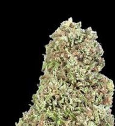 Pin by Weed4high on Buy marijuana online USA | Pinterest | Weed