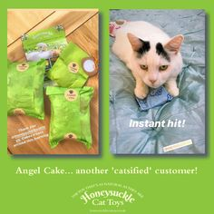 Angel Cake's Mum tells me that her new honeysuckle pouch is a hit! Cat Magazine, My Little Girl, Say Hi, Cat Toys, Cool Cats, Cuddling, My Friend, Pouch