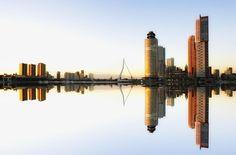 Rotterdam is bezaaid met levendige veganistische restaurants en bakkerijen. Hier zijn een aantal van onze favorieten in de stad met de Erasmusbrug die je niet mag missen!