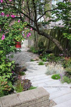 Evergreen Climbing, Evergreen Vines, Landscape Design, Garden Design, Lush Lawn, Sloped Garden, Balcony Garden, Small Gardens, Garden Paths