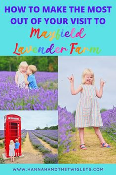 Mayfield Lavender Farm Family Days Out Uk, Mayfield Lavender, Days Out In London, Educational Toys For Toddlers, Christmas Travel, Family Vacation Destinations, Lavender Fields, Toddler Toys, Craft Activities